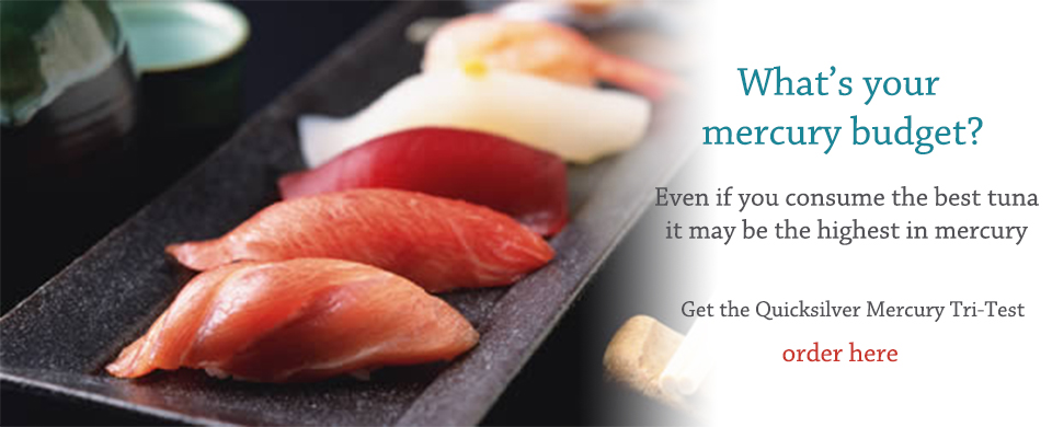 魚が好きですか?そろそろ、水銀検査を受ける時期かも知れません。